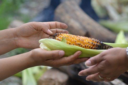 Appel à contribution – Aide alimentaire en Afrique : de la mobilisation à son acceptabilité sociale en période de Covid-19